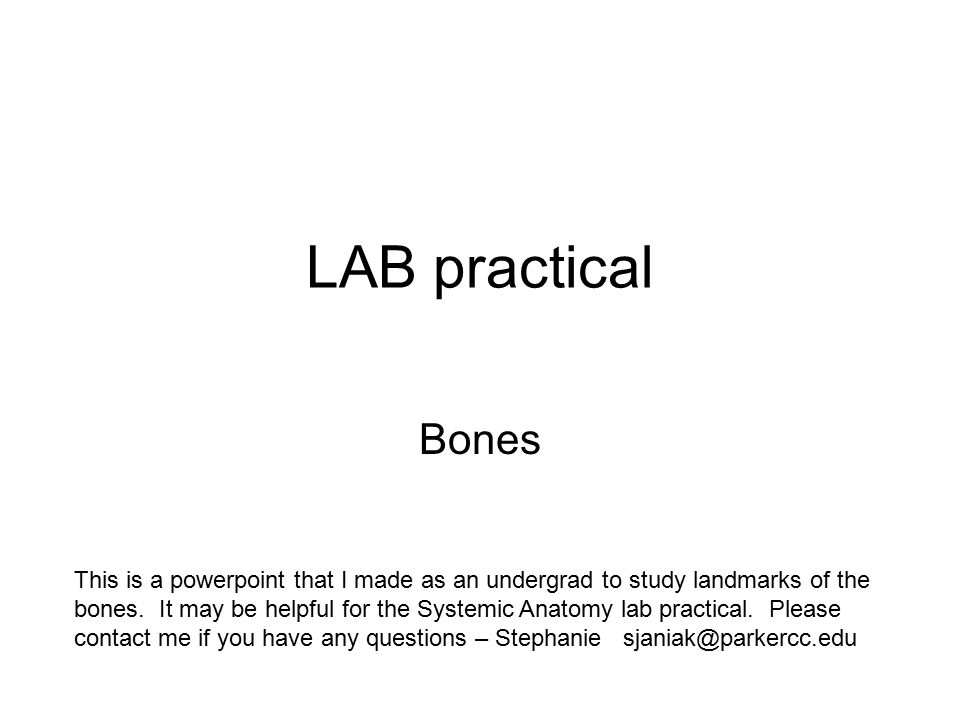LAB practical Bones This is a powerpoint that I made as an undergrad ...