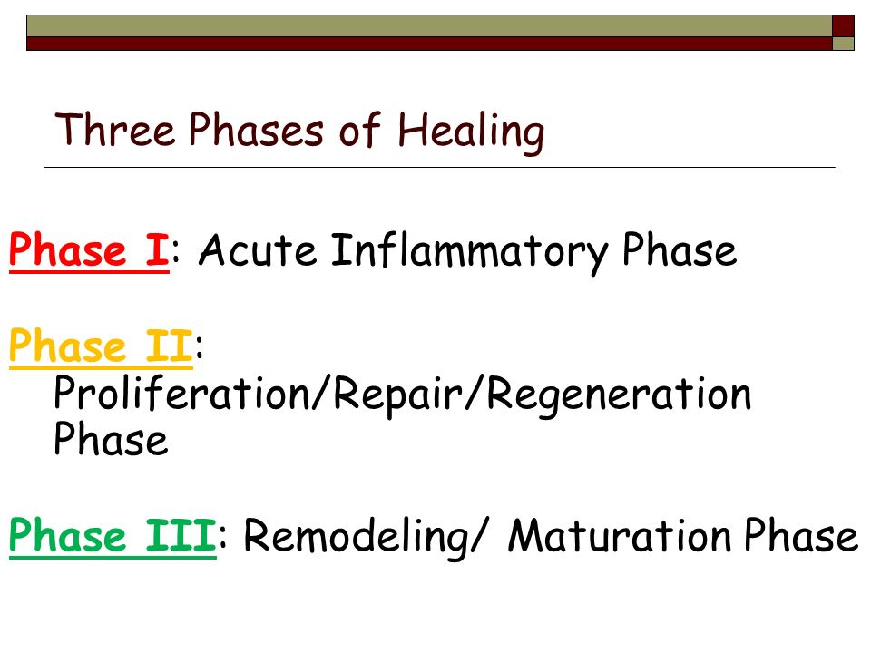 Tissue Response to Injury The Healing Process  Essential