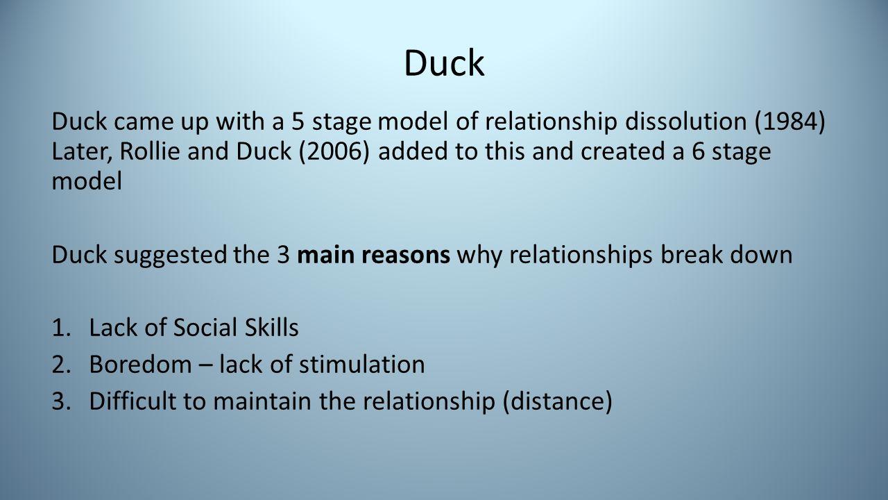 ducks phase model psychology evaluation