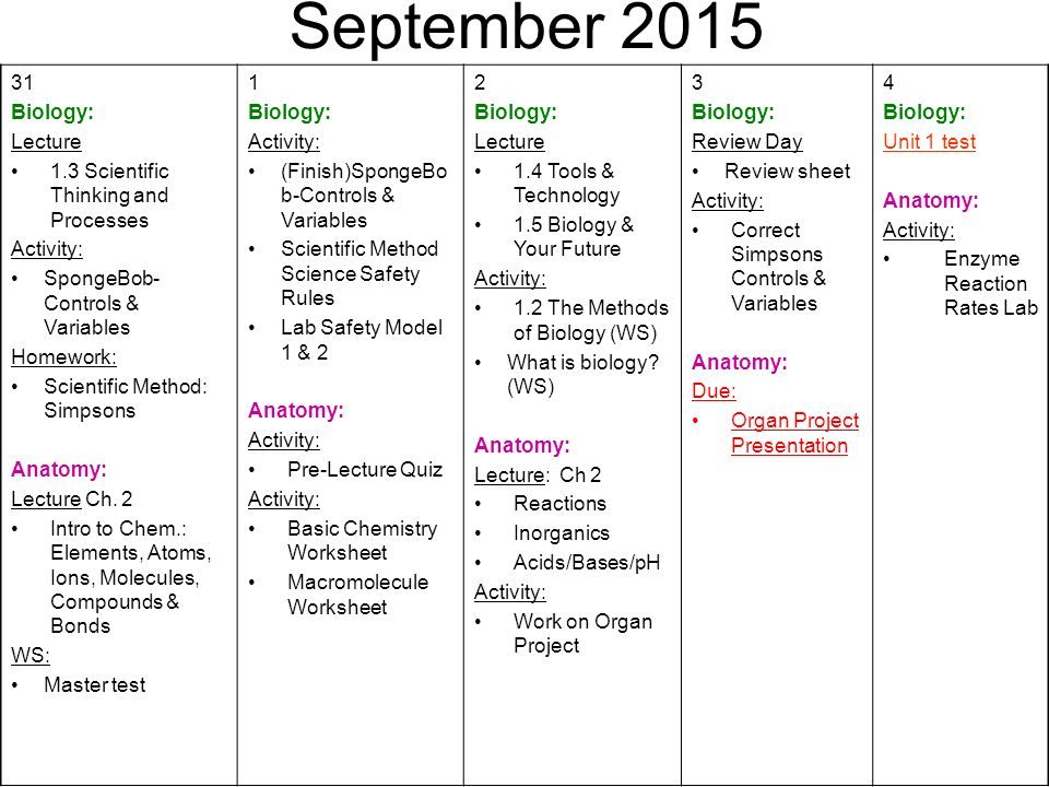 August First Day of School Biology: Activity: Welcome to