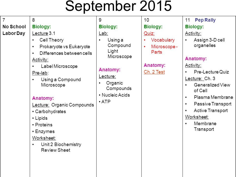 August first day of school biology activity welcome to biology 4 september ccuart Gallery