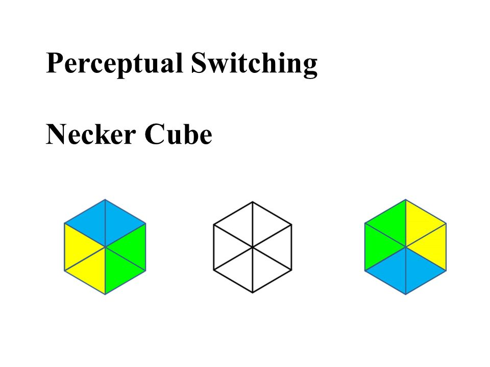 Perceptual Switching Necker Cube
