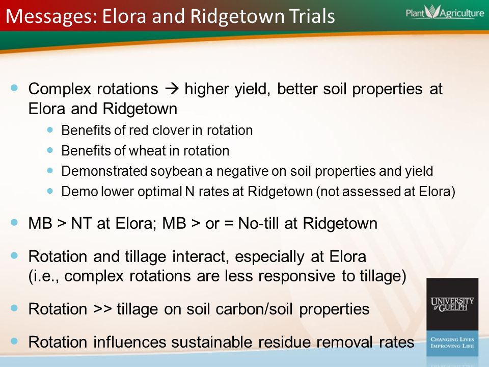Crop Rotations – Is Winter Wheat the