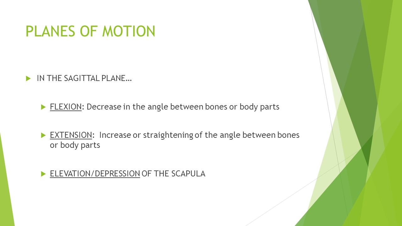 PLANES OF MOTION DIRECTIONAL MOVEMENT ANATOMICAL TERMS. - ppt download