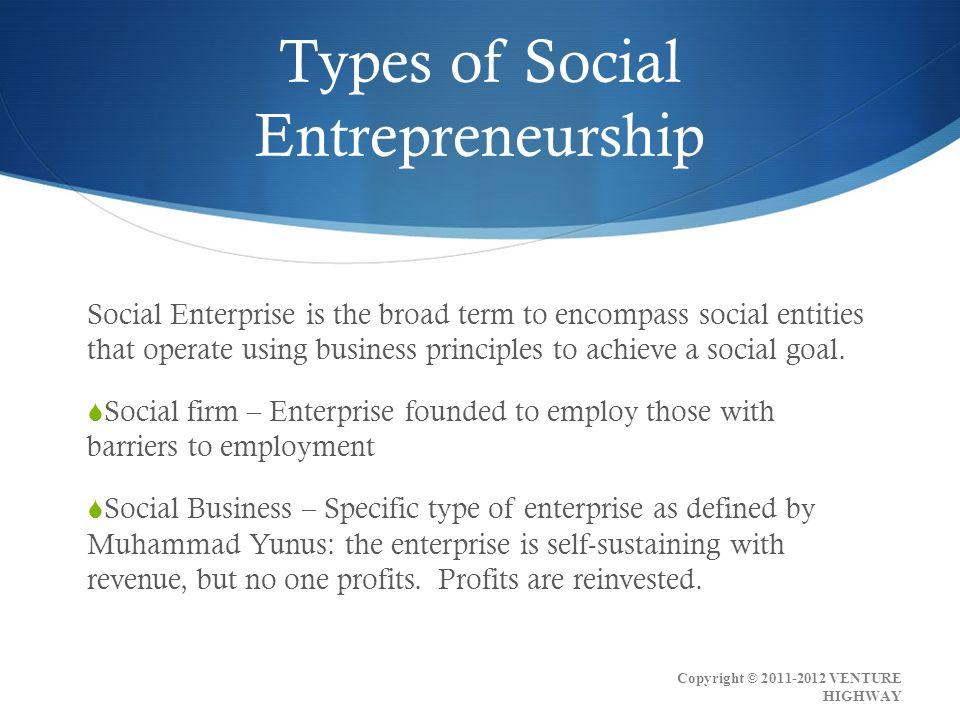 Social Entrepreneurship Defined Module 1 Copyright © VENTURE HIGHWAY
