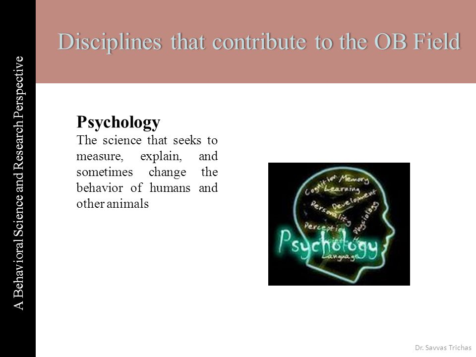 2 Nd Week A Behavioral Science And Research Perspectivea Behavioral
