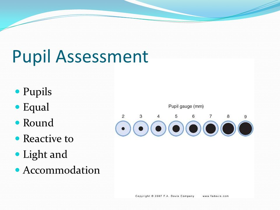 Neurological Function Assessment And Therapeutic Measures Ppt