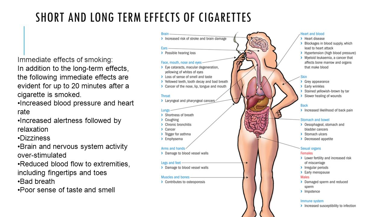 Long And Short Term Effects Of Drugs And Alcohol Y10 Pe Point Cook