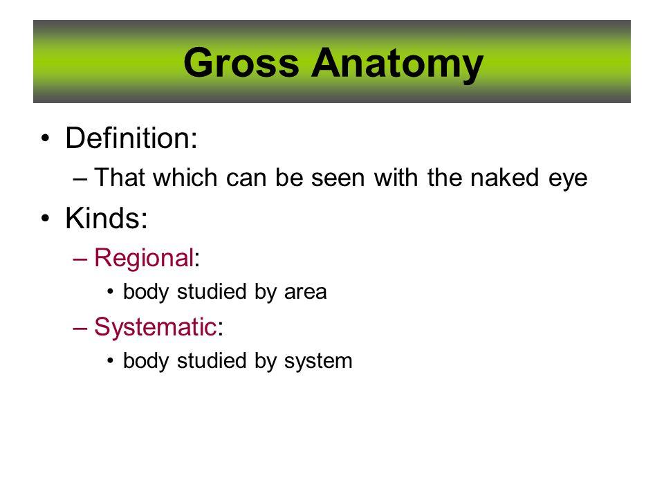 1 Essentials of Human Anatomy Essentials of Human Anatomy ...
