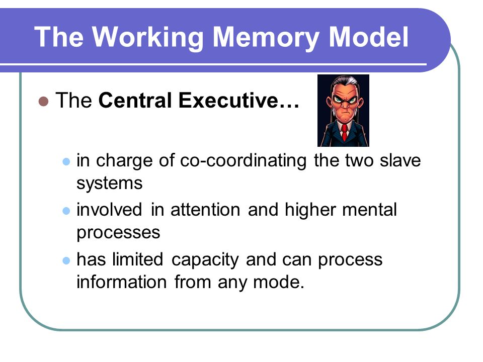 The Working Memory Model Baddeley Hitch The Working Memory Model