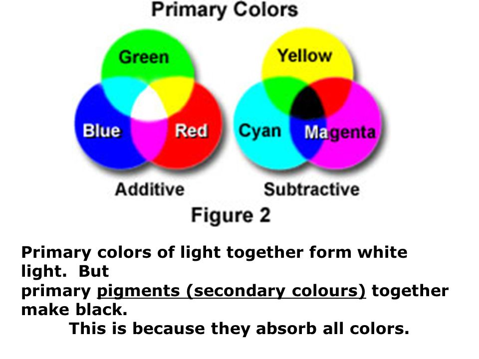today you will 1 explain how the colours of objects depend on the
