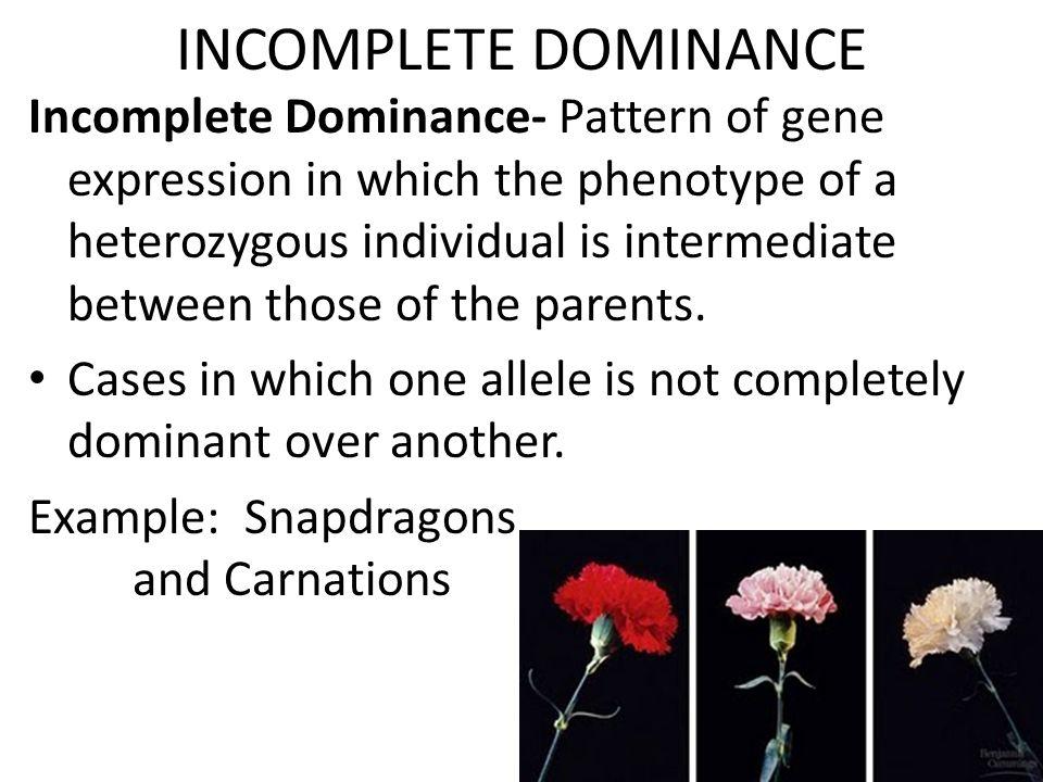 INCOMPLETE DOMINANCE Incomplete Dominance Pattern Of Gene
