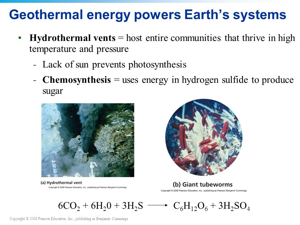 Copyright © 2008 Pearson Education, Inc., publishing as Benjamin Cummings Geothermal energy powers Earth's systems Hydrothermal vents = host entire communities that thrive in high temperature and pressure -Lack of sun prevents photosynthesis -Chemosynthesis = uses energy in hydrogen sulfide to produce sugar 6CO 2 + 6H 2 0 + 3H 2 S C 6 H 12 O 6 + 3H 2 SO 4