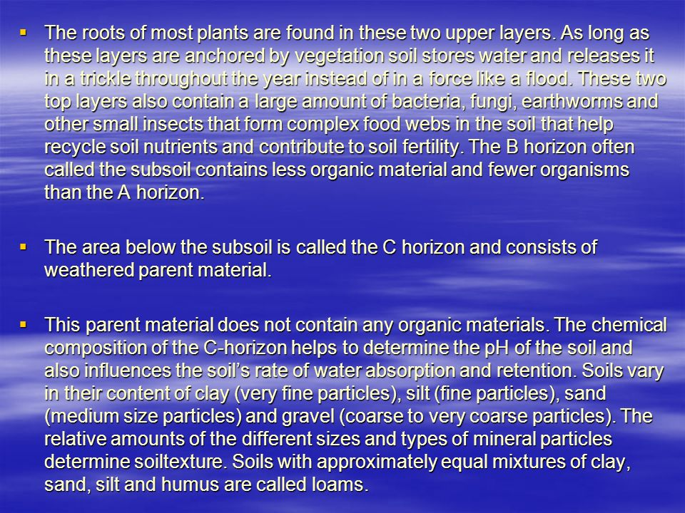  The roots of most plants are found in these two upper layers.