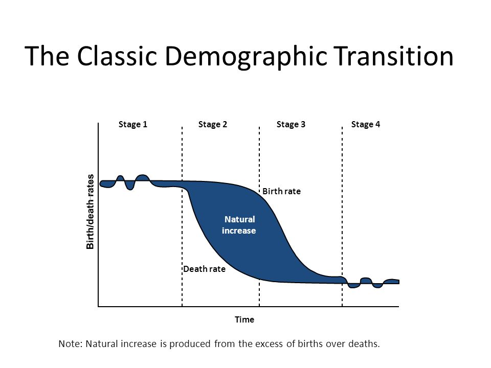 four stages of demographic transition