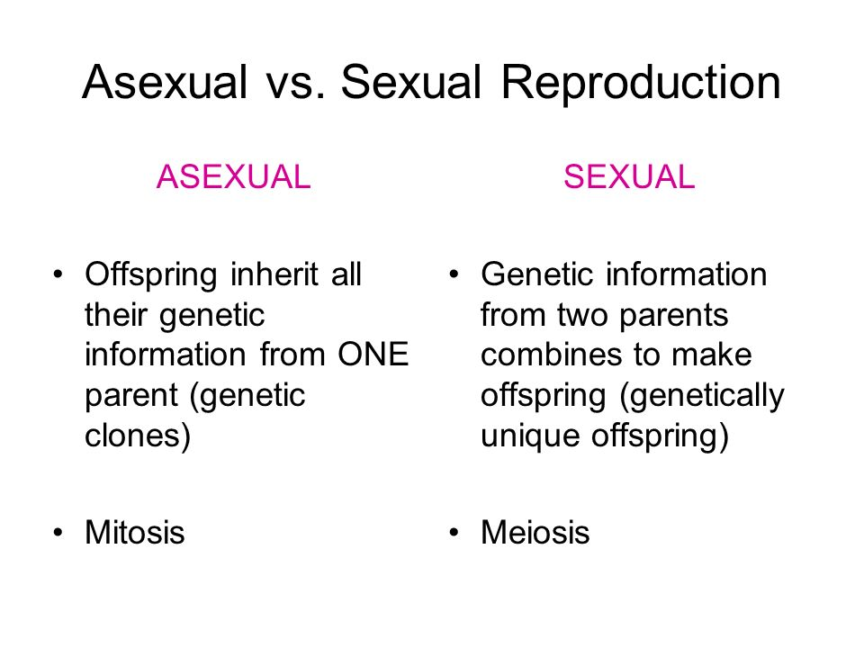 Mitosis and meiosis in sexual reproduction