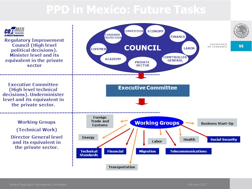 February 2007Federal Regulatory Improvement Commission PPD in Mexico: Future Tasks Transportation Regulatory Improvement Council (High level political decisions).