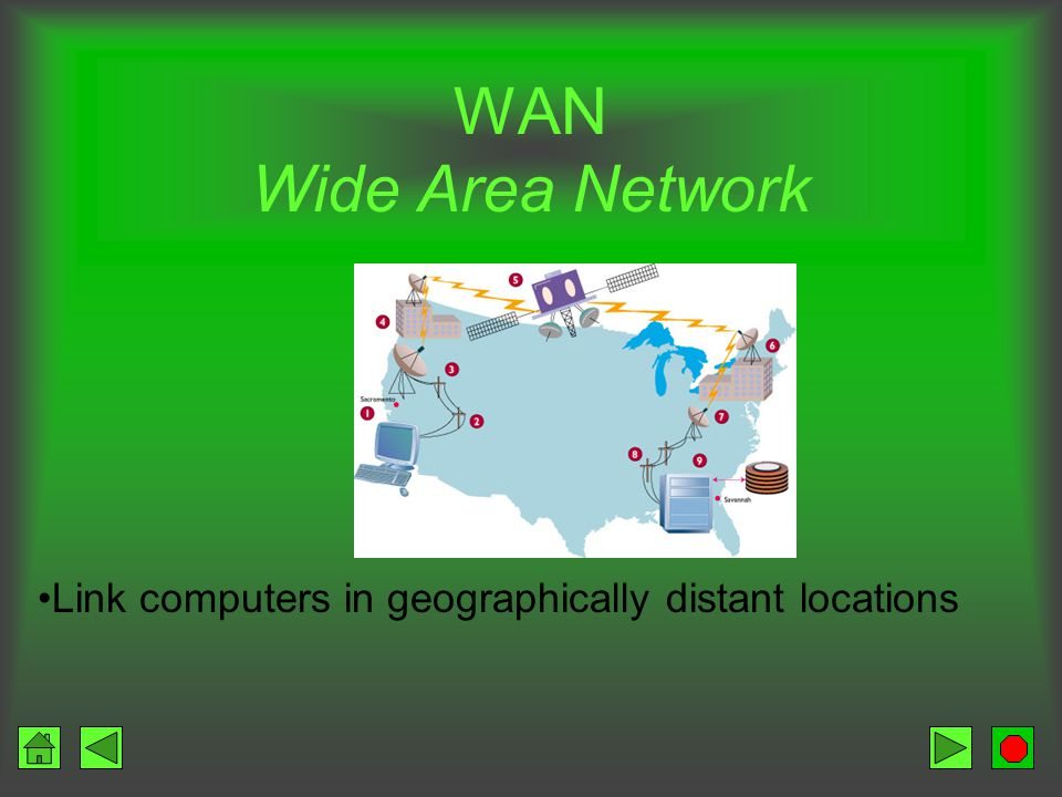 LAN (Local Area Network) Connections over short distances through communications media –Same floor or building Components PCs Network cable