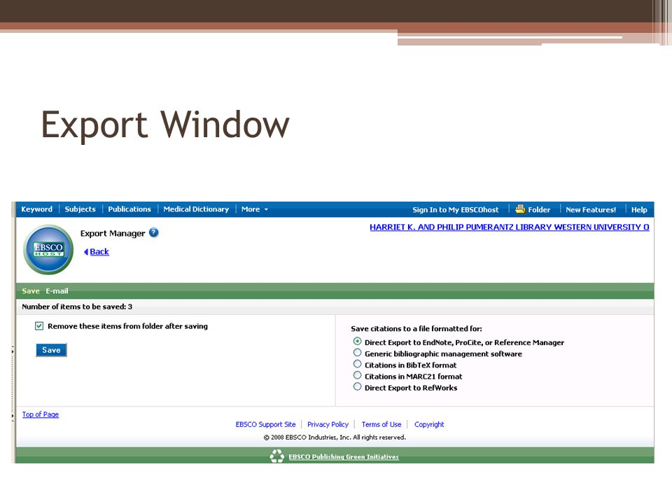 Export Window