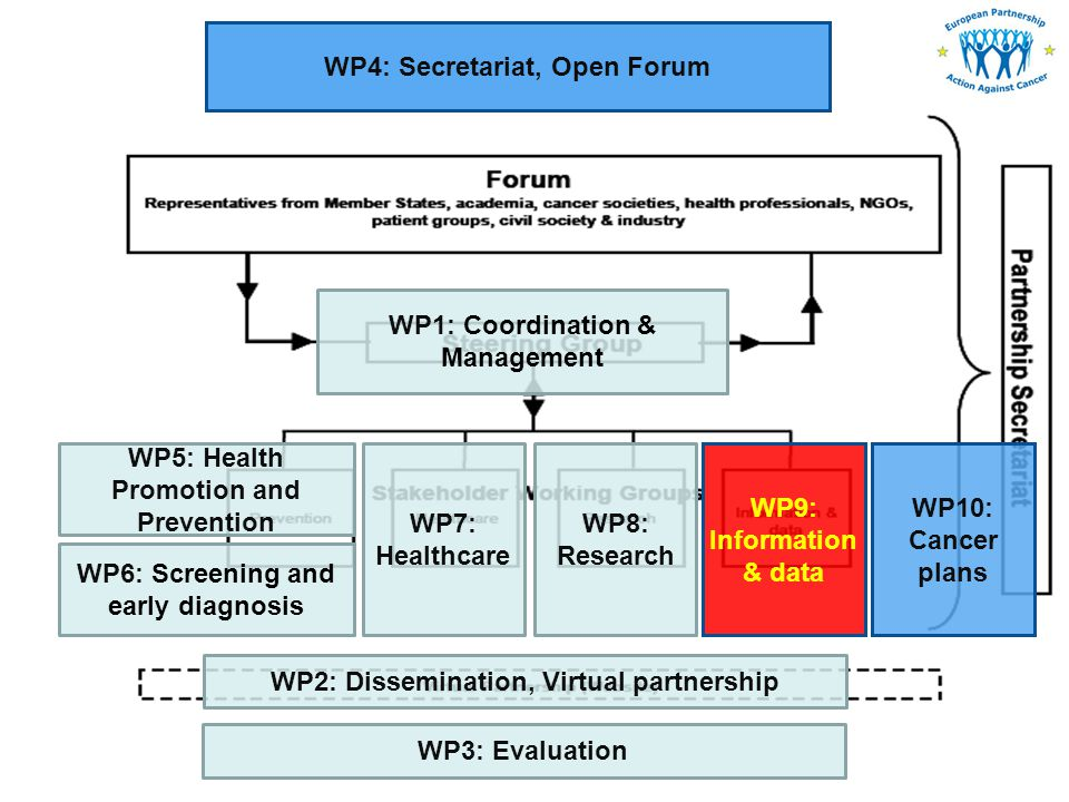 WP1: Coordination & Management WP2: Dissemination, Virtual partnership WP4: Secretariat, Open Forum WP3: Evaluation WP5: Health Promotion and Prevention WP6: Screening and early diagnosis WP8: Research WP7: Healthcare WP9: Information & data WP10: Cancer plans