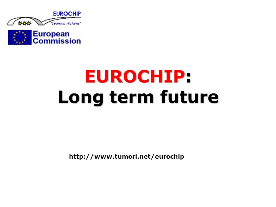 EUROCHIP: Long term future