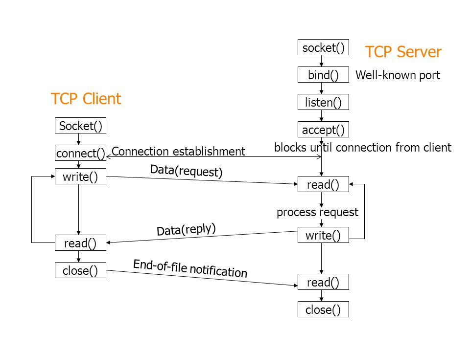 socket() bind() listen() accept() read() write() read() close() Socket() connect() write() read() close() TCP Client TCP Server Well-known port blocks until connection from client process request Connection establishment Data(request) Data(reply) End-of-file notification