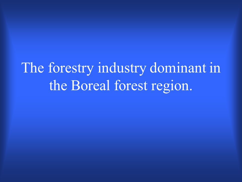 What is the West Coast Forest Region