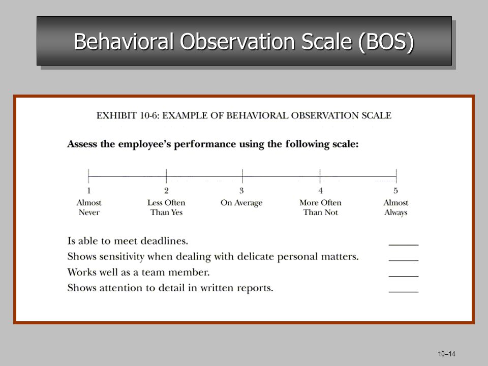 10–14 Behavioral Observation Scale (BOS)