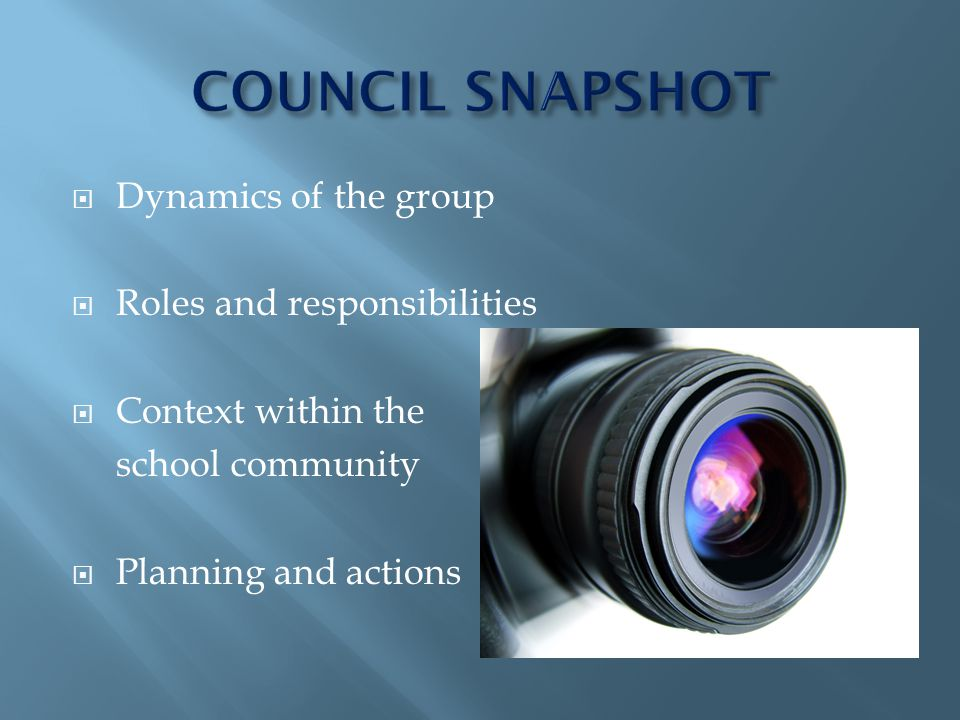 Dynamics of the group Roles and responsibilities Context within the school community Planning and actions