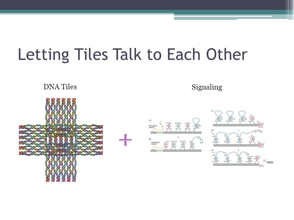 Letting Tiles Talk to Each Other DNA Tiles Signaling