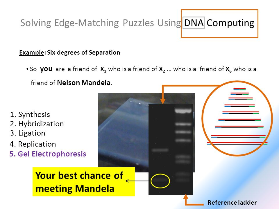 Solving Edge-Matching Puzzles Using DNA Computing Example: Six degrees of Separation So you are a friend of X 1 who is a friend of X 2 … who is a friend of X 6 who is a friend of Nelson Mandela.