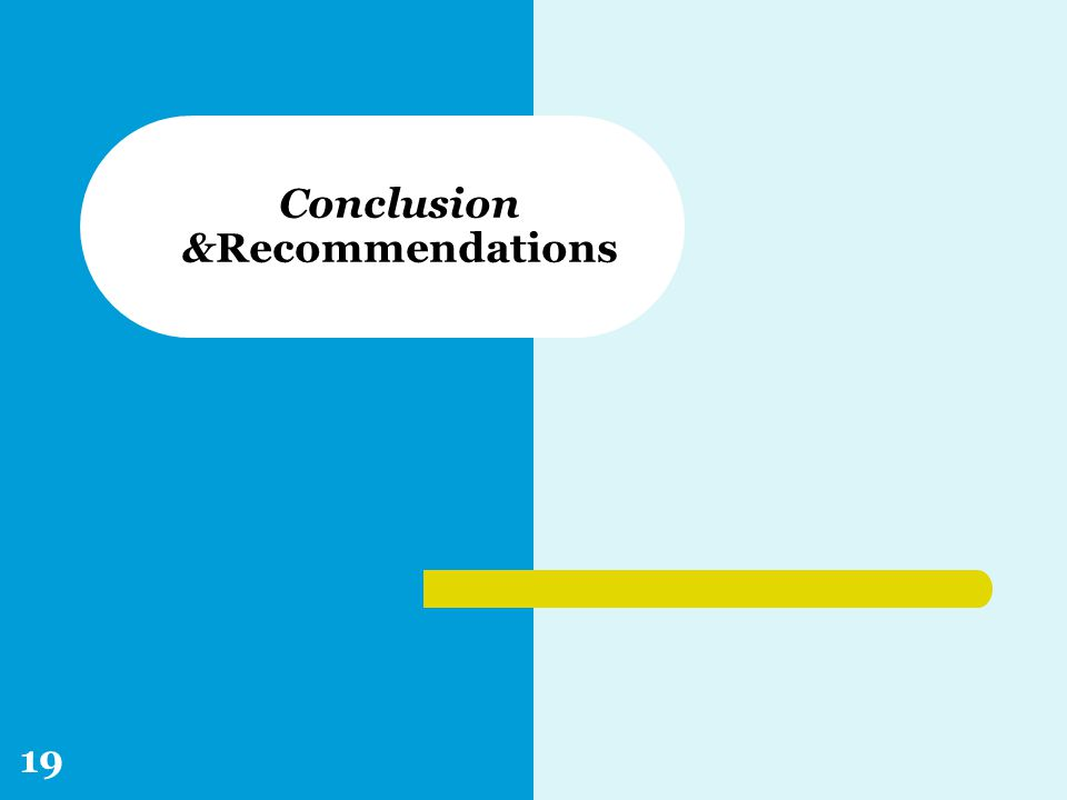 Conclusion &Recommendations 19