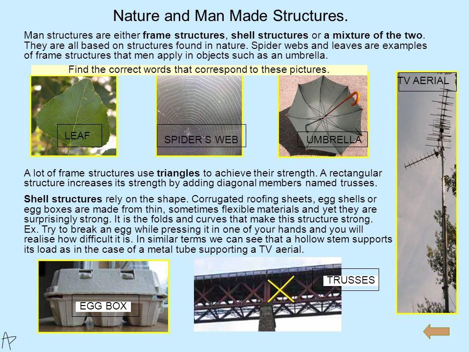Man made frame structure ex. 1 | leonard's dnt portfolio.