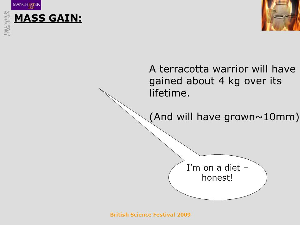 British Science Festival 2009 MASS GAIN: A terracotta warrior will have gained about 4 kg over its lifetime.