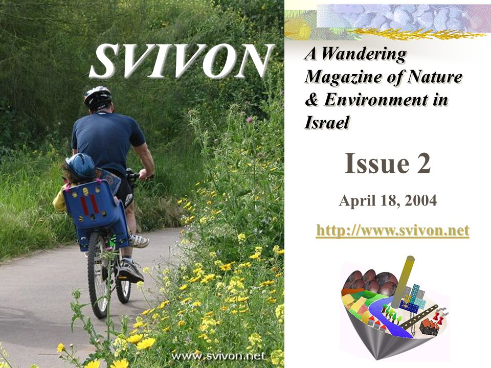 Issue 2 April 18, 2004 http://www.svivon.net SVIVON A Wandering Magazine of Nature & Environment in Israel
