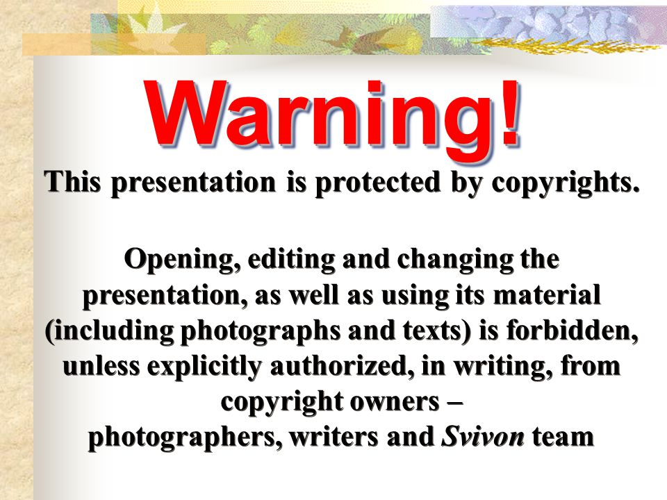 This presentation is protected by copyrights.