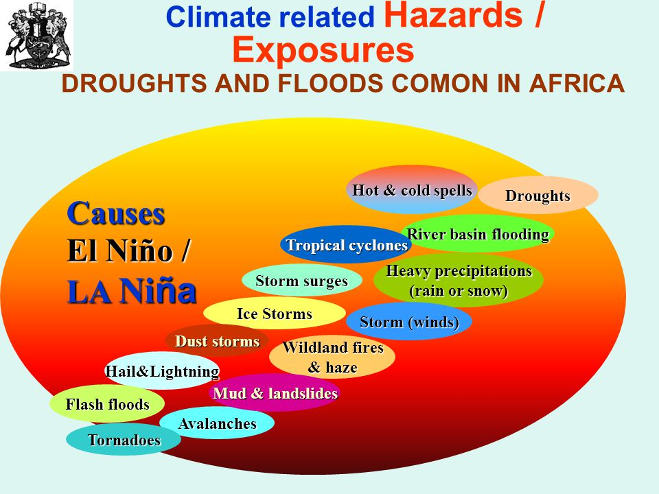 Causes El Niño / LA Ni ña Climate related Hazards / Exposures DROUGHTS AND FLOODS COMON IN AFRICA Hail&Lightning Avalanches Flash floods Tornadoes Wildland fires & haze Hot & cold spells Heavy precipitations (rain or snow) Droughts Storm surges Storm (winds) River basin flooding Mud & landslides Ice Storms Tropical cyclones Dust storms