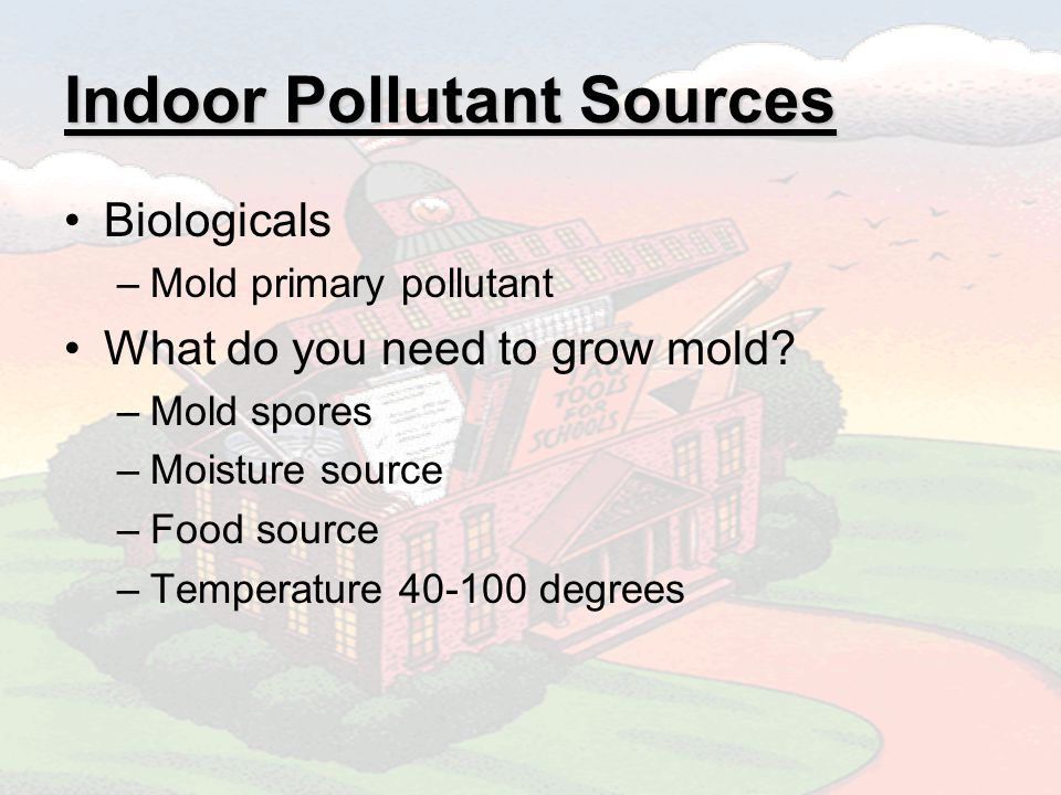 Indoor Pollutant Sources Biologicals –Mold primary pollutant What do you need to grow mold.