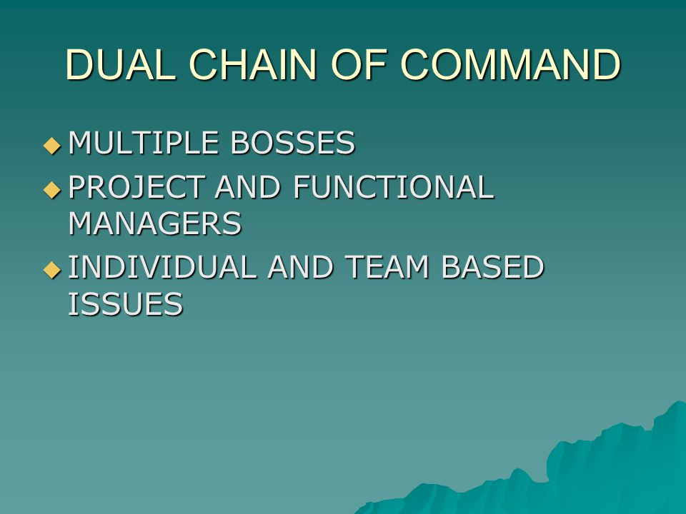 DUAL CHAIN OF COMMAND MULTIPLE BOSSES MULTIPLE BOSSES PROJECT AND FUNCTIONAL MANAGERS PROJECT AND FUNCTIONAL MANAGERS INDIVIDUAL AND TEAM BASED ISSUES INDIVIDUAL AND TEAM BASED ISSUES