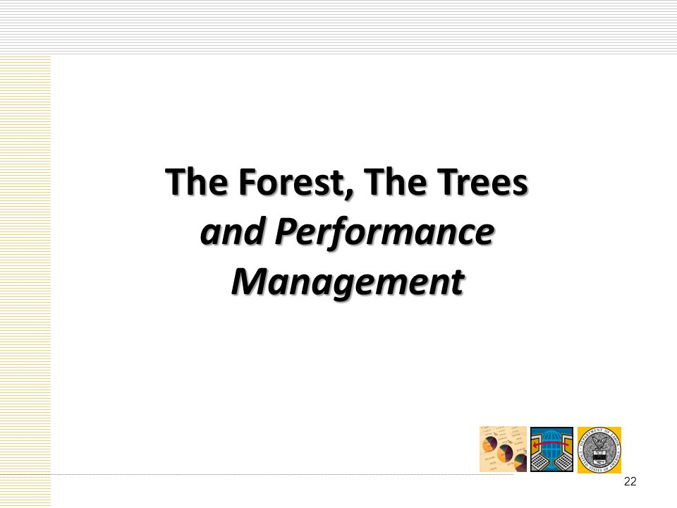 The Forest, The Trees and Performance Management 22