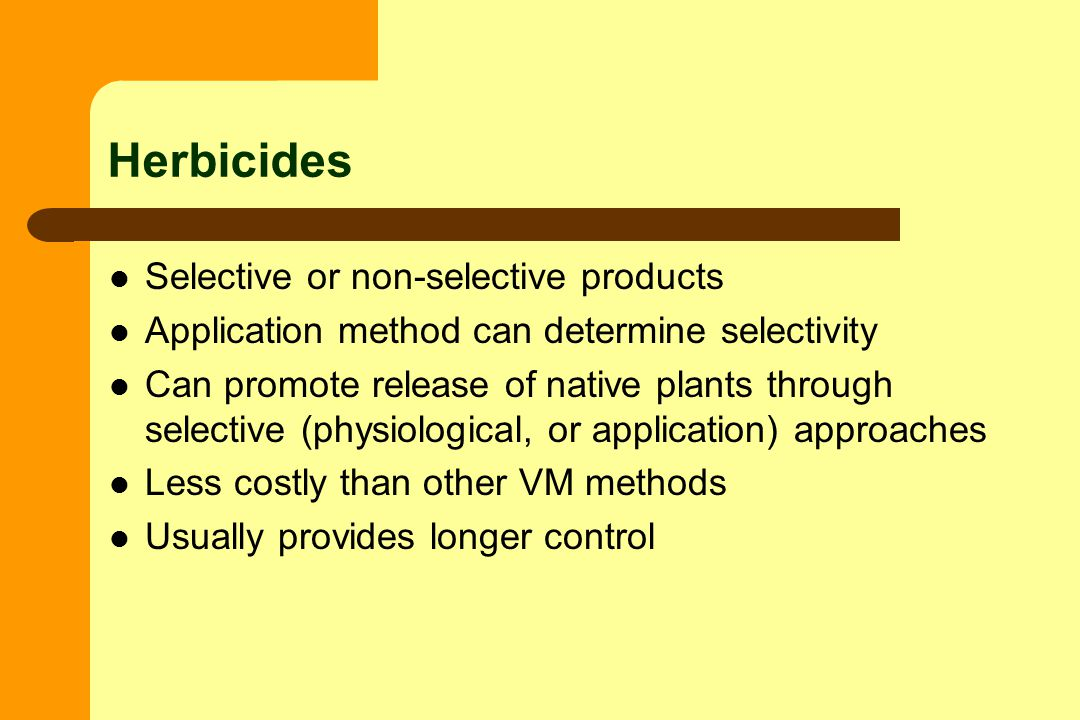 Herbicides Selective or non-selective products Application method can determine selectivity Can promote release of native plants through selective (physiological, or application) approaches Less costly than other VM methods Usually provides longer control