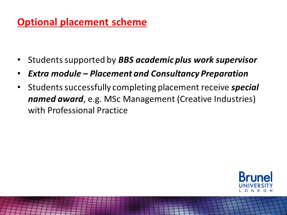 Optional placement scheme Students supported by BBS academic plus work supervisor Extra module – Placement and Consultancy Preparation Students successfully completing placement receive special named award, e.g.