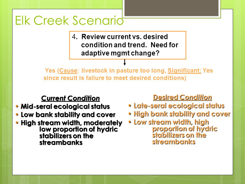 Elk Creek Scenario Current Condition Current Condition Mid-seral ecological status Mid-seral ecological status Low bank stability and cover Low bank stability and cover High stream width, moderately low proportion of hydric stabilizers on the streambanks High stream width, moderately low proportion of hydric stabilizers on the streambanks 4.