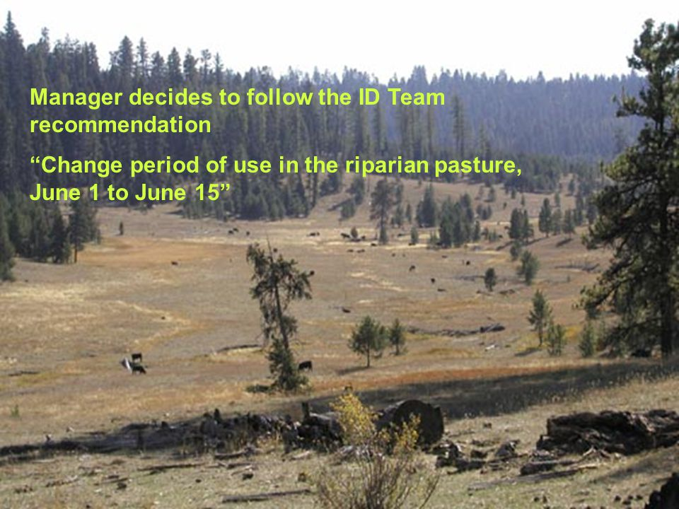 Manager decides to follow the ID Team recommendation Change period of use in the riparian pasture, June 1 to June 15