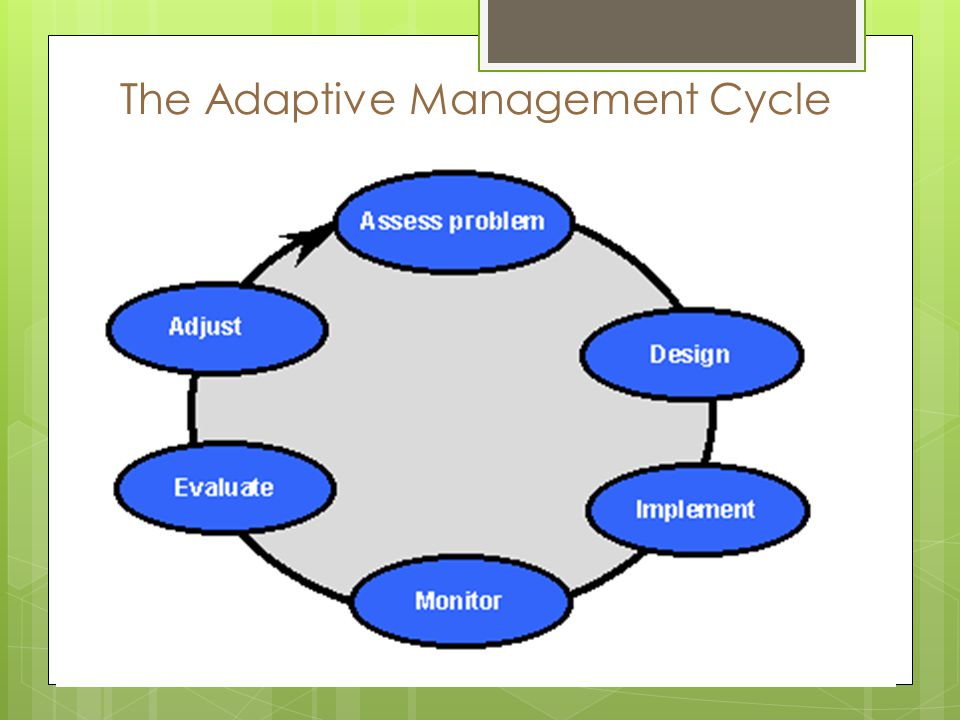 The Adaptive Management Cycle