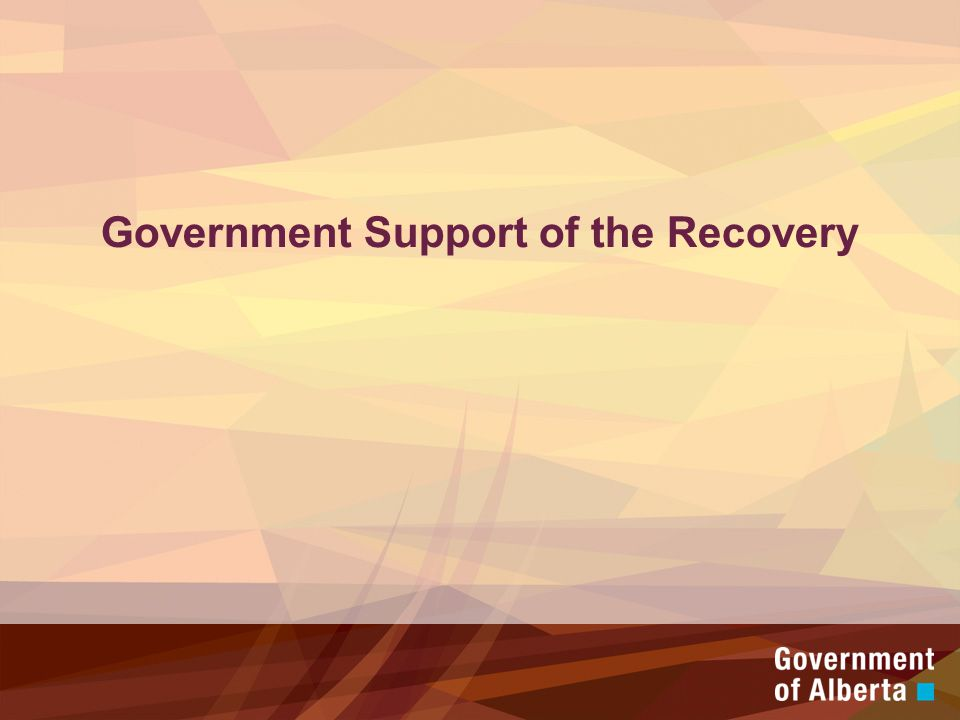 Government Support of the Recovery