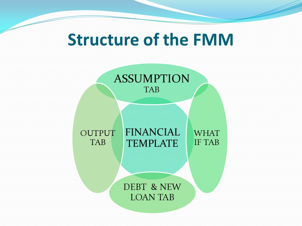 Structure of the FMM FINANCIAL TEMPLATE ASSUMPTION TAB WHAT IF TAB DEBT & NEW LOAN TAB OUTPUT TAB