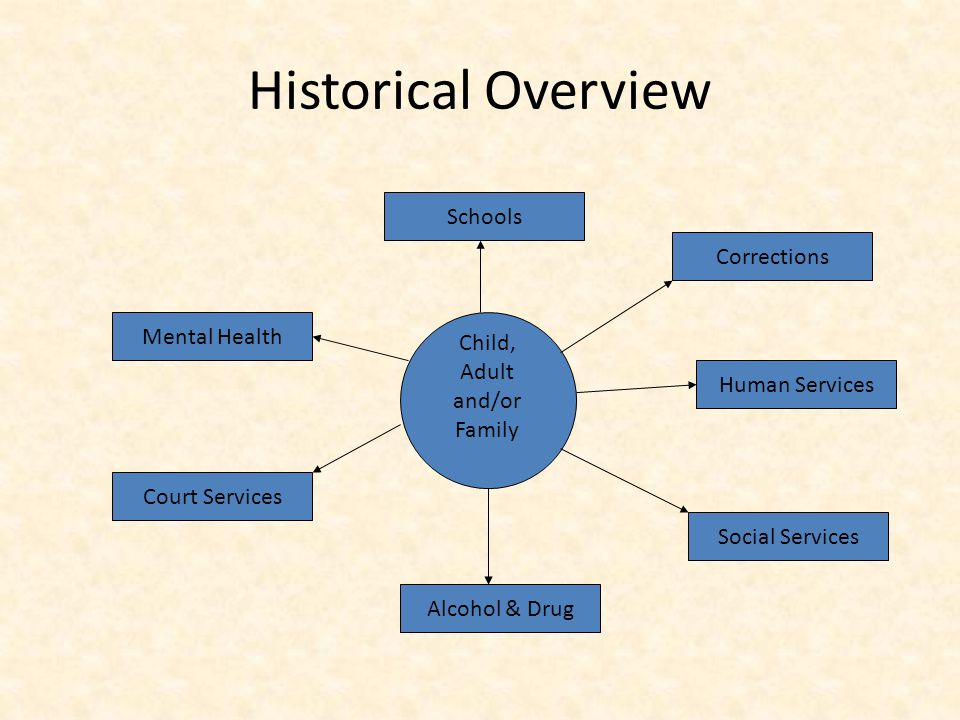 Historical Overview Child, Adult and/or Family Mental Health Social Services Court Services Corrections Alcohol & Drug Schools Human Services
