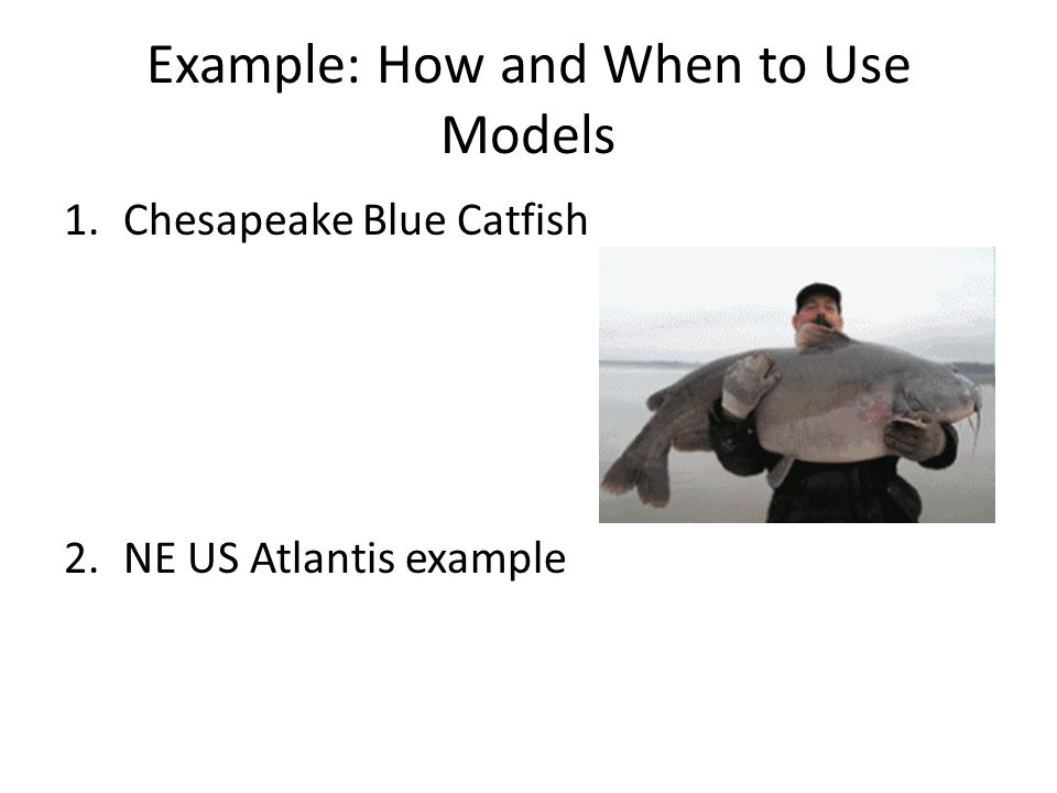 Example: How and When to Use Models 1.Chesapeake Blue Catfish 2.NE US Atlantis example