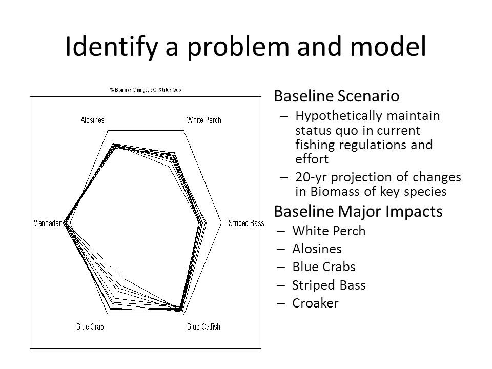 Identify a problem and model Baseline Scenario – Hypothetically maintain status quo in current fishing regulations and effort – 20-yr projection of changes in Biomass of key species Baseline Major Impacts – White Perch – Alosines – Blue Crabs – Striped Bass – Croaker